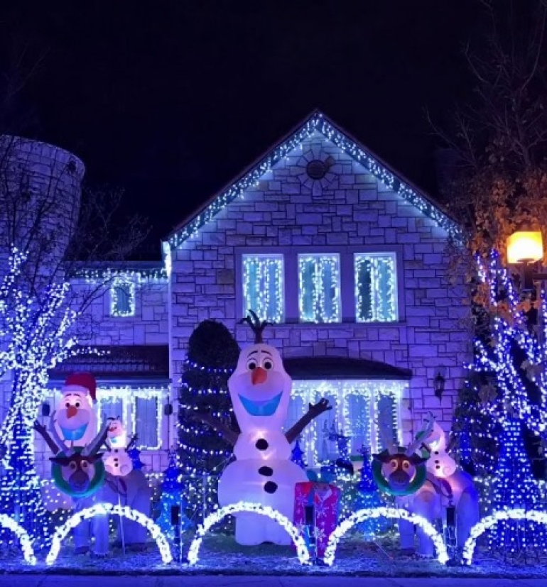 Frozen Land Christmas Light Display 2017